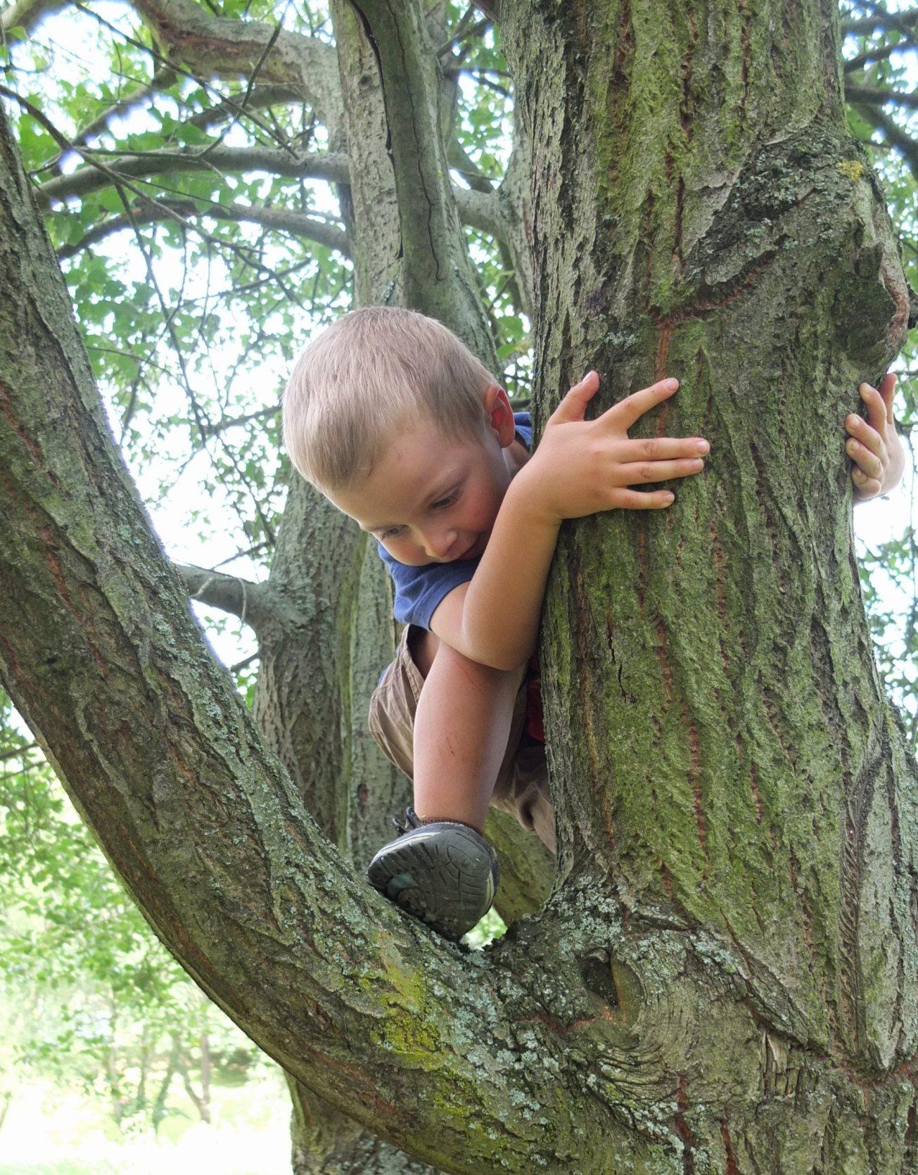 na-strome